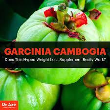Garcinia cambogia veda - kompozycja - aktywność - gdzie kupić