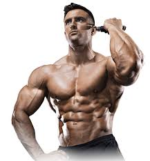 Musculin Active - gdzie kupić - allegro - producent
