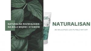 Naturalisan - forum - gdzie kupić - działanie - na stawy